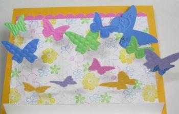 Butterflies Acetate Inside 2