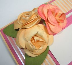 Paper Roses Closeup - Carmen