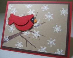Season of friendship cardinal - carmen