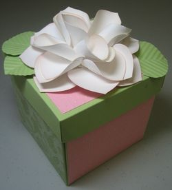 Flower box ornament rose - peggy