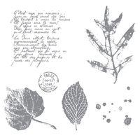French foliage 120845L