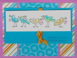 More The Merrier - birds