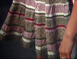 Shelli's skirt closeup