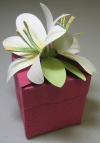 Flower box lily - peggy