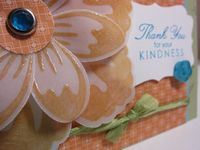 Build A Blossom Vellum peach card