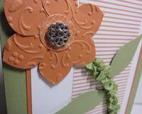 Bab embossed bloom closeup