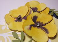 Hoover flowers - butterfly pansies close