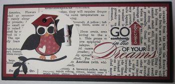 Owl grad money holder