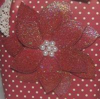 Poinsettia box in a bag close