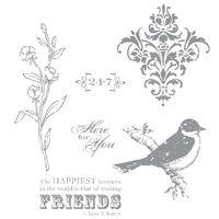 Friends 24-7 dd 118829L