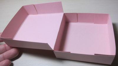 Pizza - open box