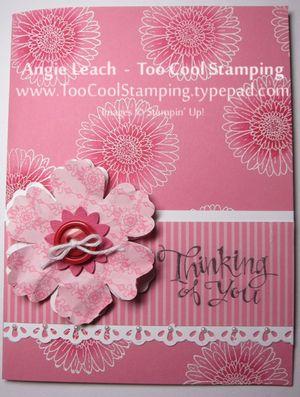 Pink - thinking large blooms