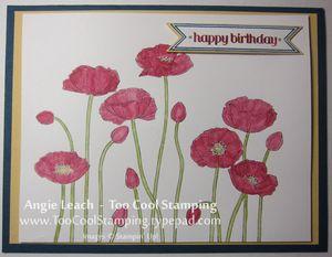 Demo - darla poppy birthday