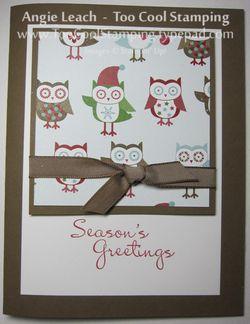Snow fest - owls