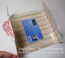 Jewel case - cherry stripes 4